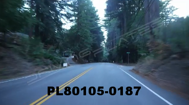 Vimeo clip HD & 4k Driving Plates Redwood Forest, CA PL80105-0187