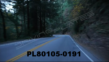 Vimeo clip HD & 4k Driving Plates Redwood Forest, CA PL80105-0191