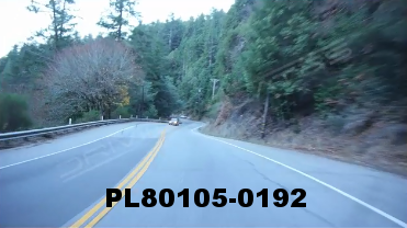 Vimeo clip HD & 4k Driving Plates Redwood Forest, CA PL80105-0192