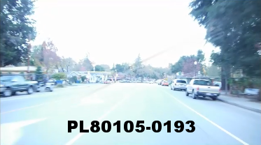Vimeo clip HD & 4k Driving Plates Redwood Forest, CA PL80105-0193