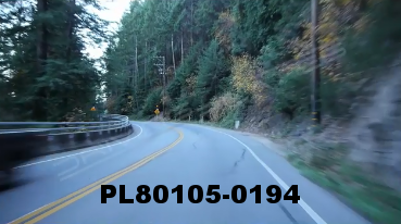 Vimeo clip HD & 4k Driving Plates Redwood Forest, CA PL80105-0194
