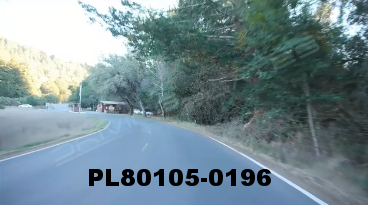 Vimeo clip HD & 4k Driving Plates Redwood Forest, CA PL80105-0196