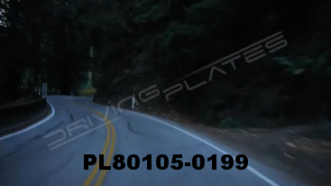 Vimeo clip HD & 4k Driving Plates Redwood Forest, CA PL80105-0199