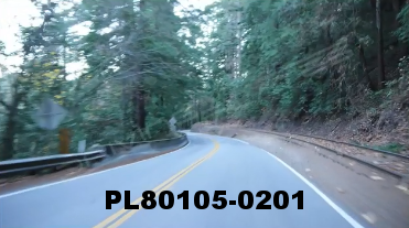 Vimeo clip HD & 4k Driving Plates Redwood Forest, CA PL80105-0201
