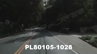 Vimeo clip HD & 4k Driving Plates Redwood Forest, CA PL80105-1028