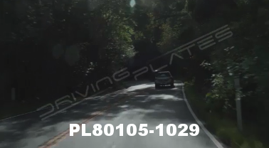Vimeo clip HD & 4k Driving Plates Redwood Forest, CA PL80105-1029