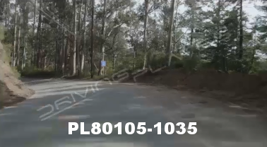 Vimeo clip HD & 4k Driving Plates Redwood Forest, CA PL80105-1035