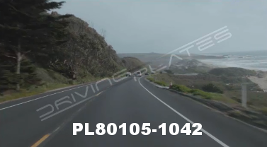 Vimeo clip HD & 4k Driving Plates Redwood Forest, CA PL80105-1042