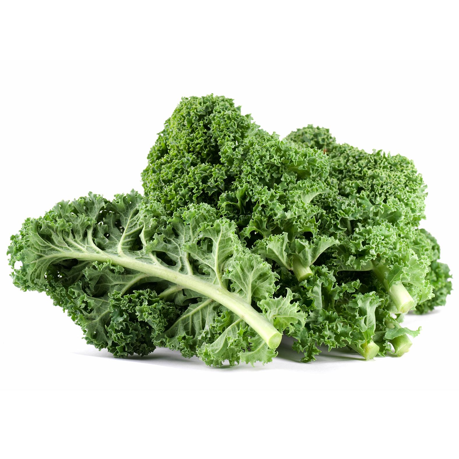 mocu-organic-kale-powder-detail.jpg