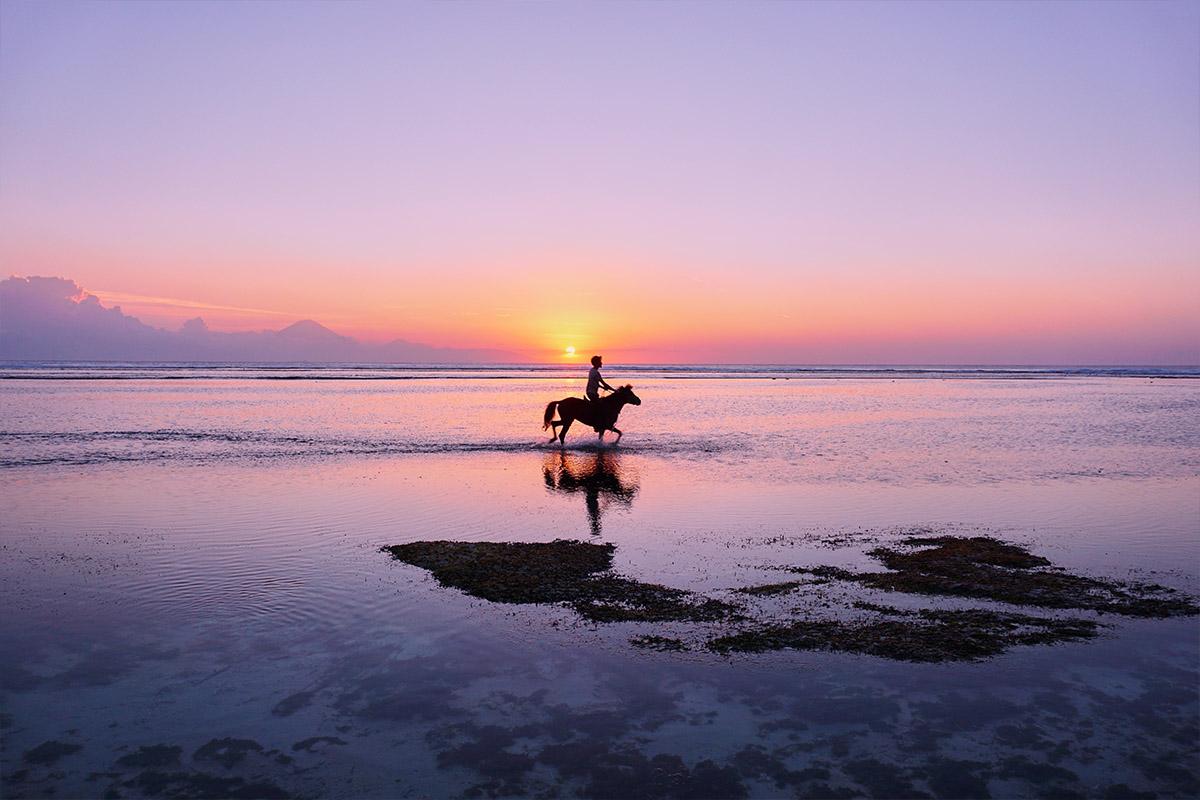 blog-bali-horse-riding.jpg