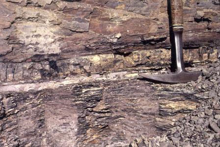 [United States Geological Survey]