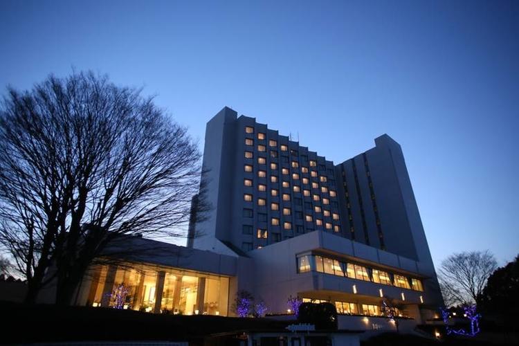 Radisson Narita är ett exempel på de hotell som ligger en kortare taxitur från flygplatsen men erbjuder en högre standard och en bättre utsikt.  Foto: Hotels.com