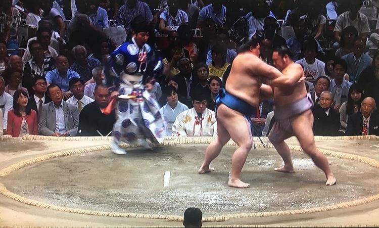 """Scen från dagens sumo-turnering, där Trump var åskådare och estradör. Huvudet nere i mitten tillhör en av fyra """"linjedomare""""."""