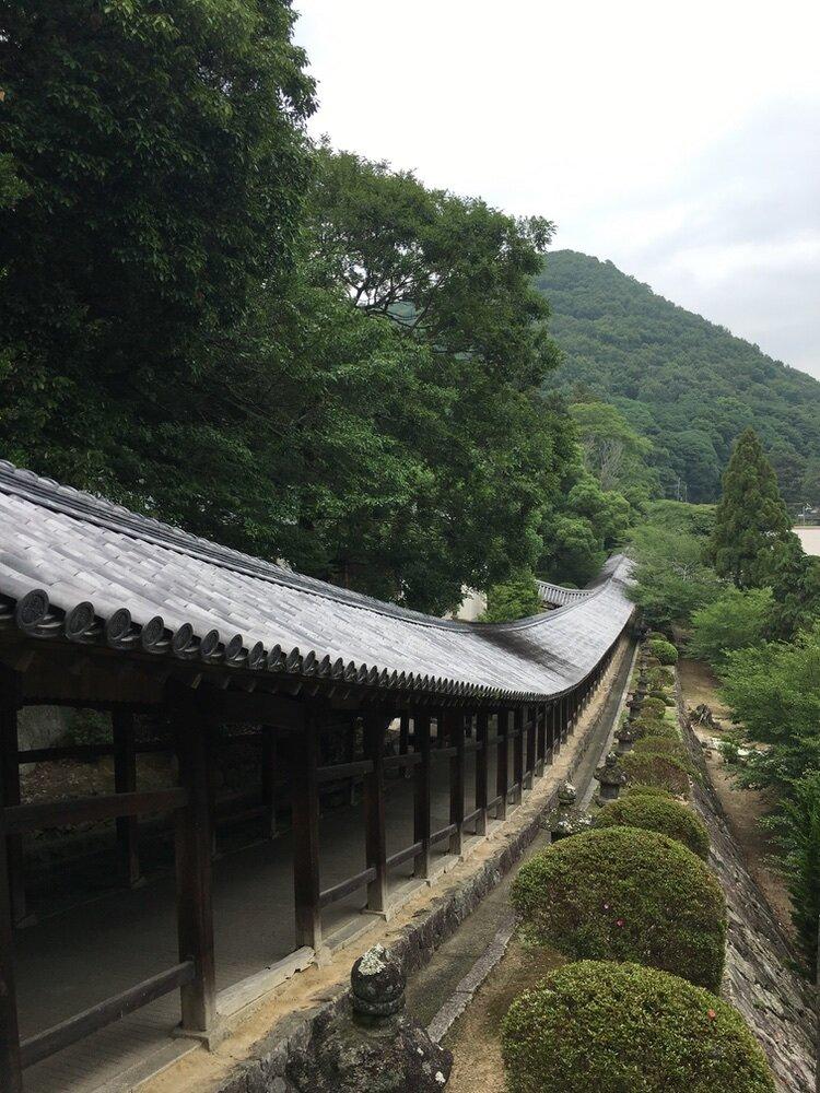 okamoto_9_jinja.jpg