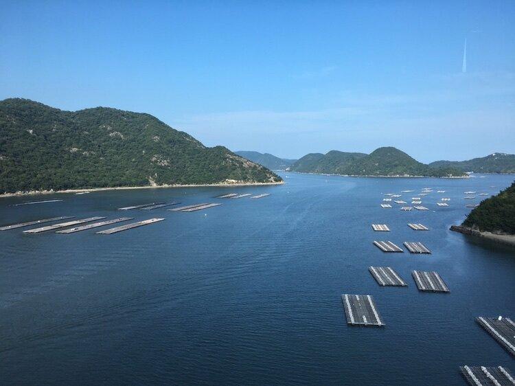 Ostronodlingar i havet utanför Okayama. Kan passa på att rekommendera japanska ostron om du gillar ostron. Bäst nu på hösten.