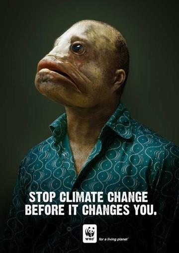 WWF Climate Change.jpg