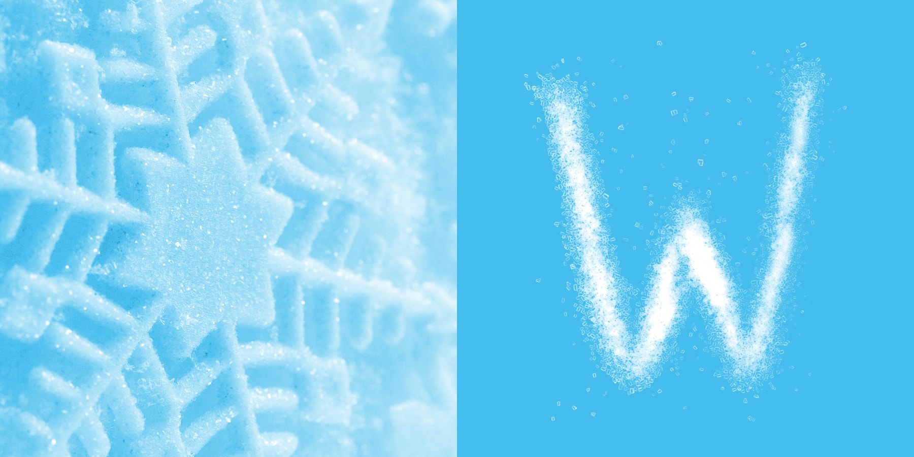 winter-logo-design-02