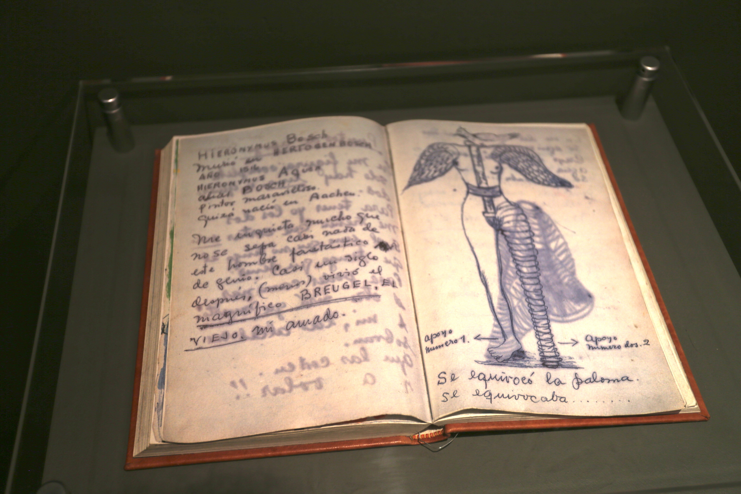 Frida's journal.