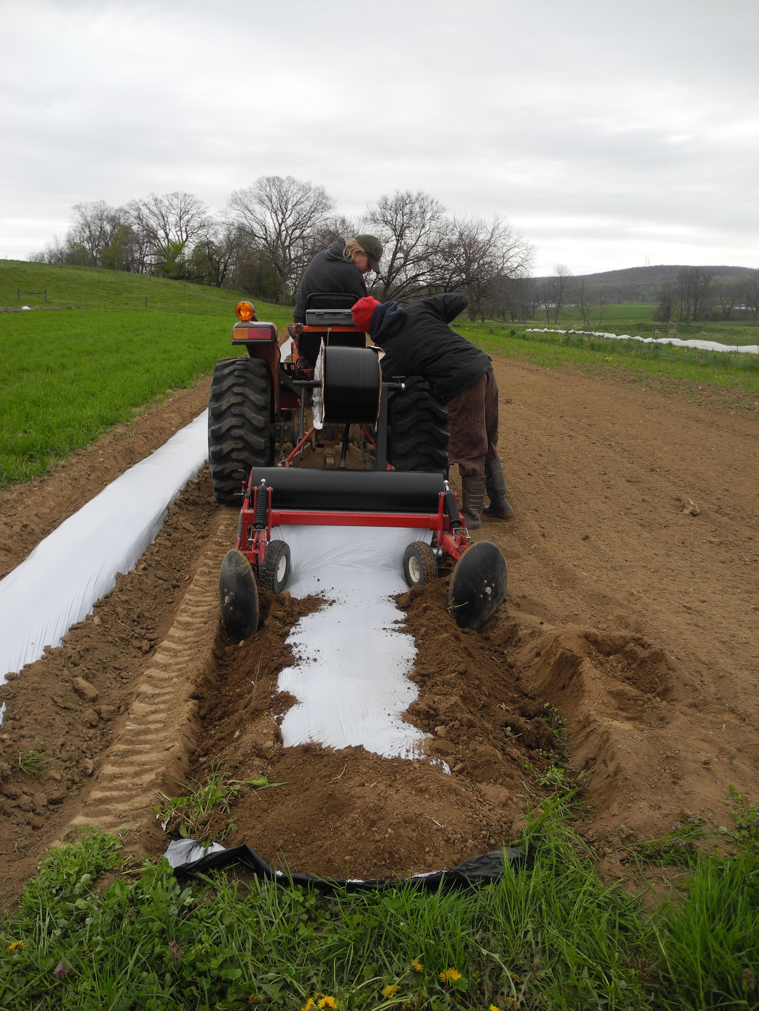Bumps and repairs along their farming journey at B&H Organic Produce