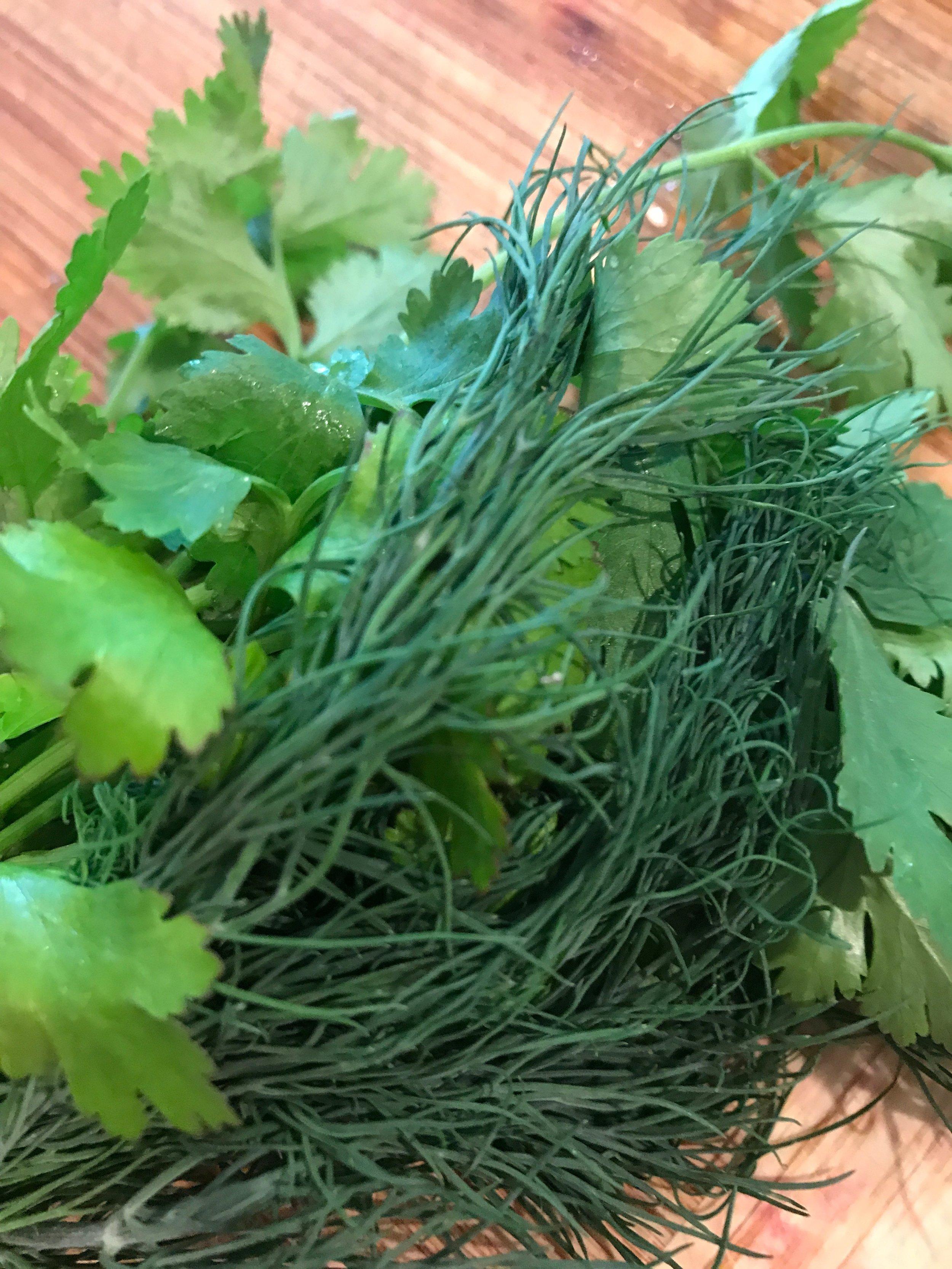 Mint, cilantro & dill