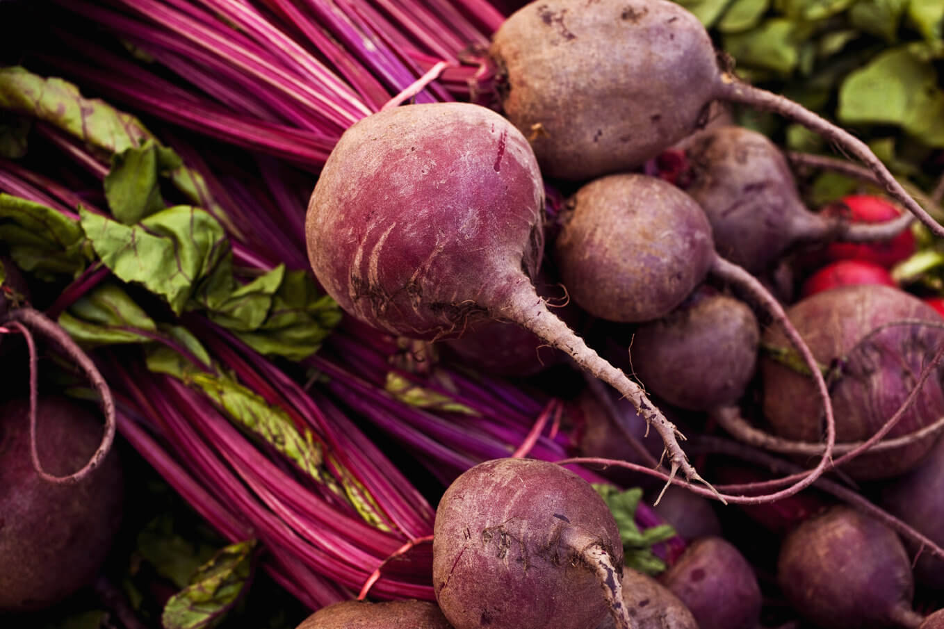The Market Beet - A Growing Roots Blog