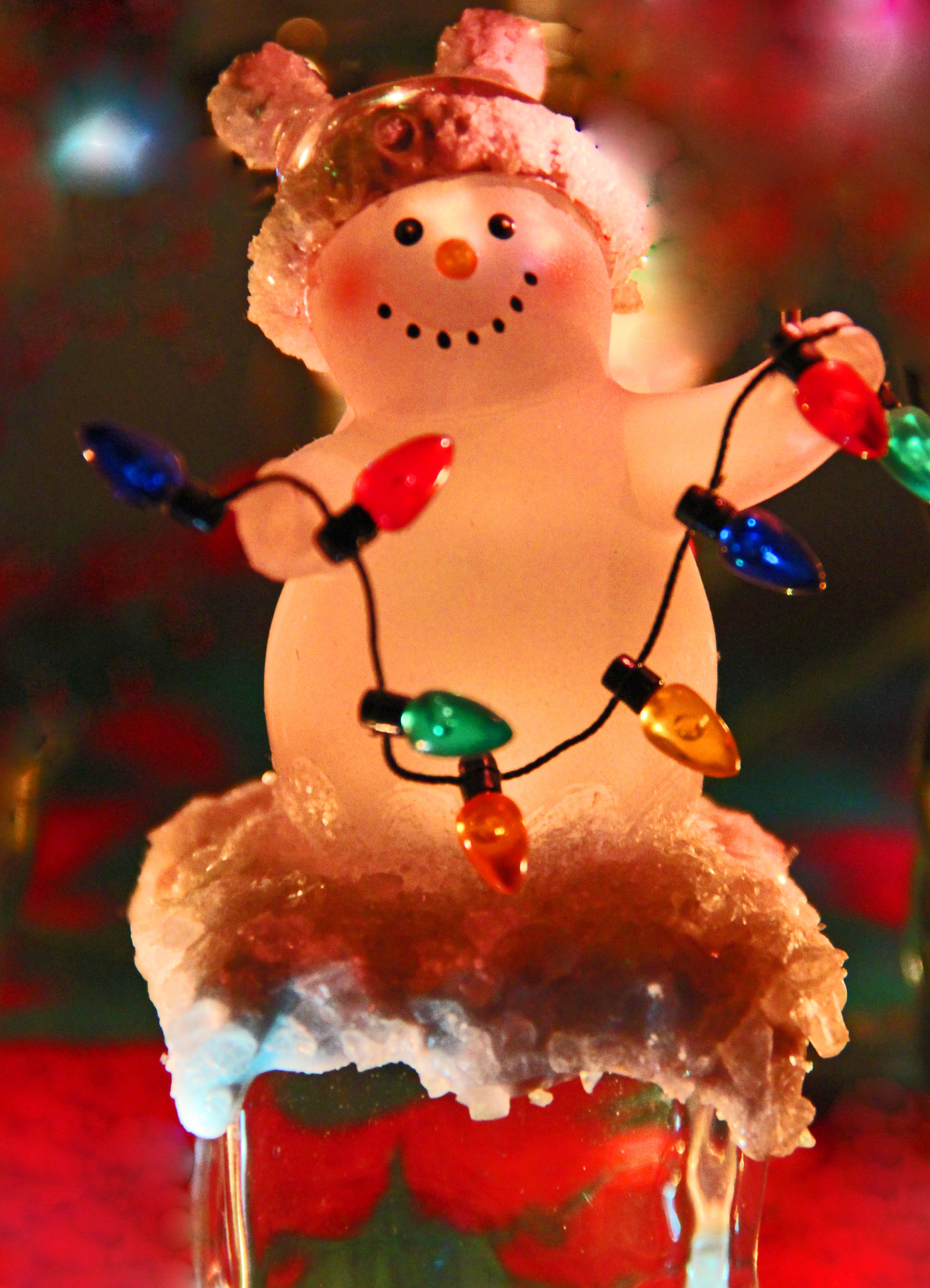 Snowman with lights.jpg