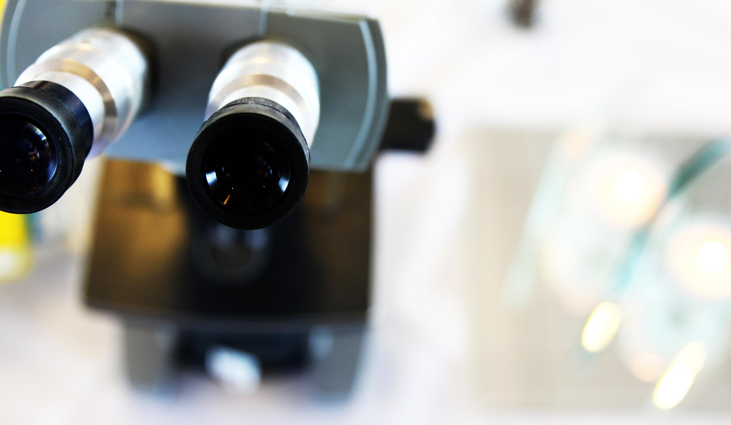 centerpiece microscope.jpg