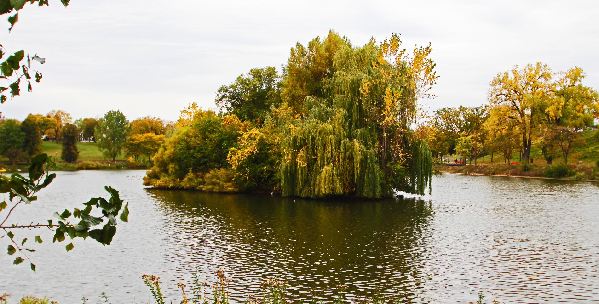 powderhorn park.jpg