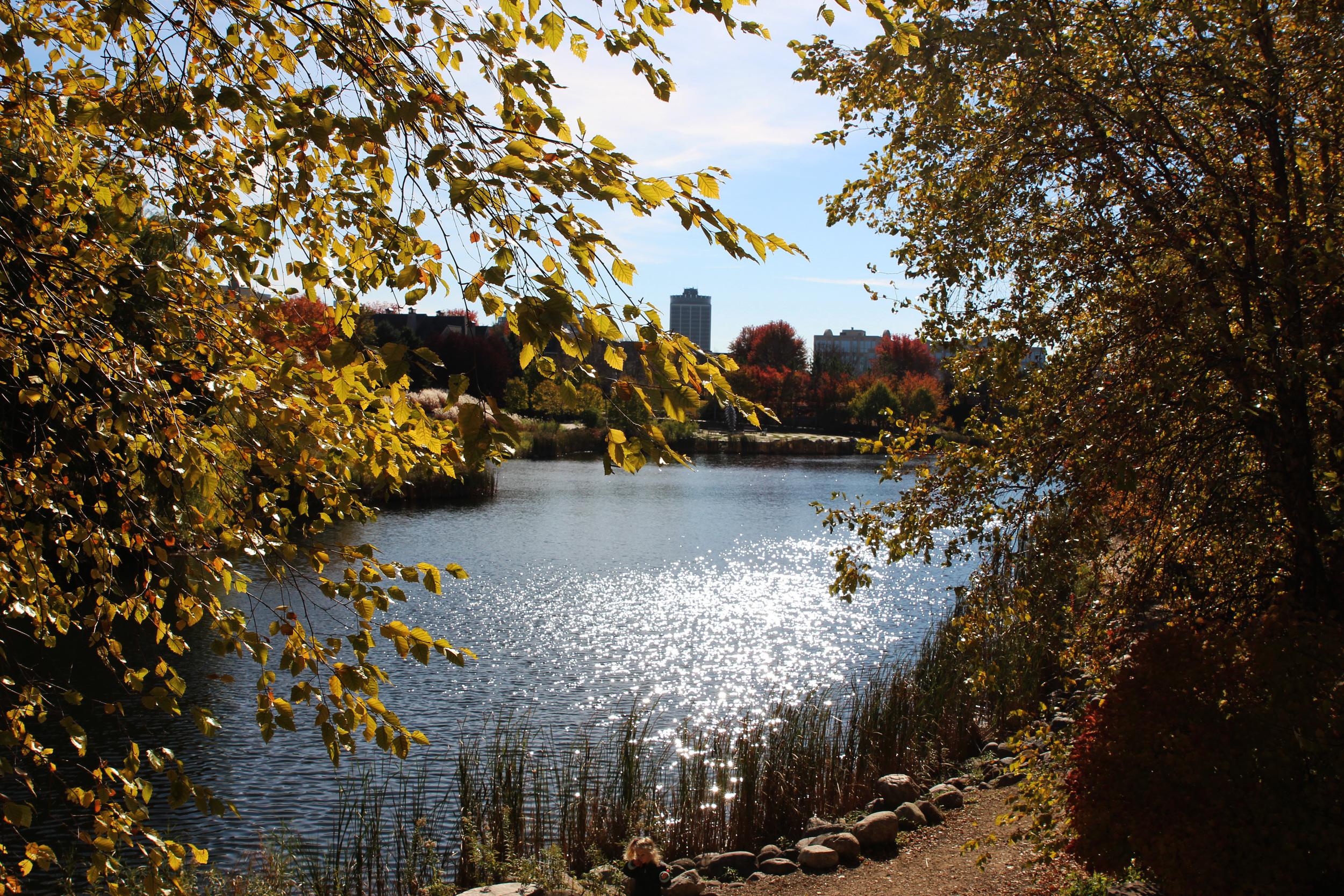 Centennial park2.jpg
