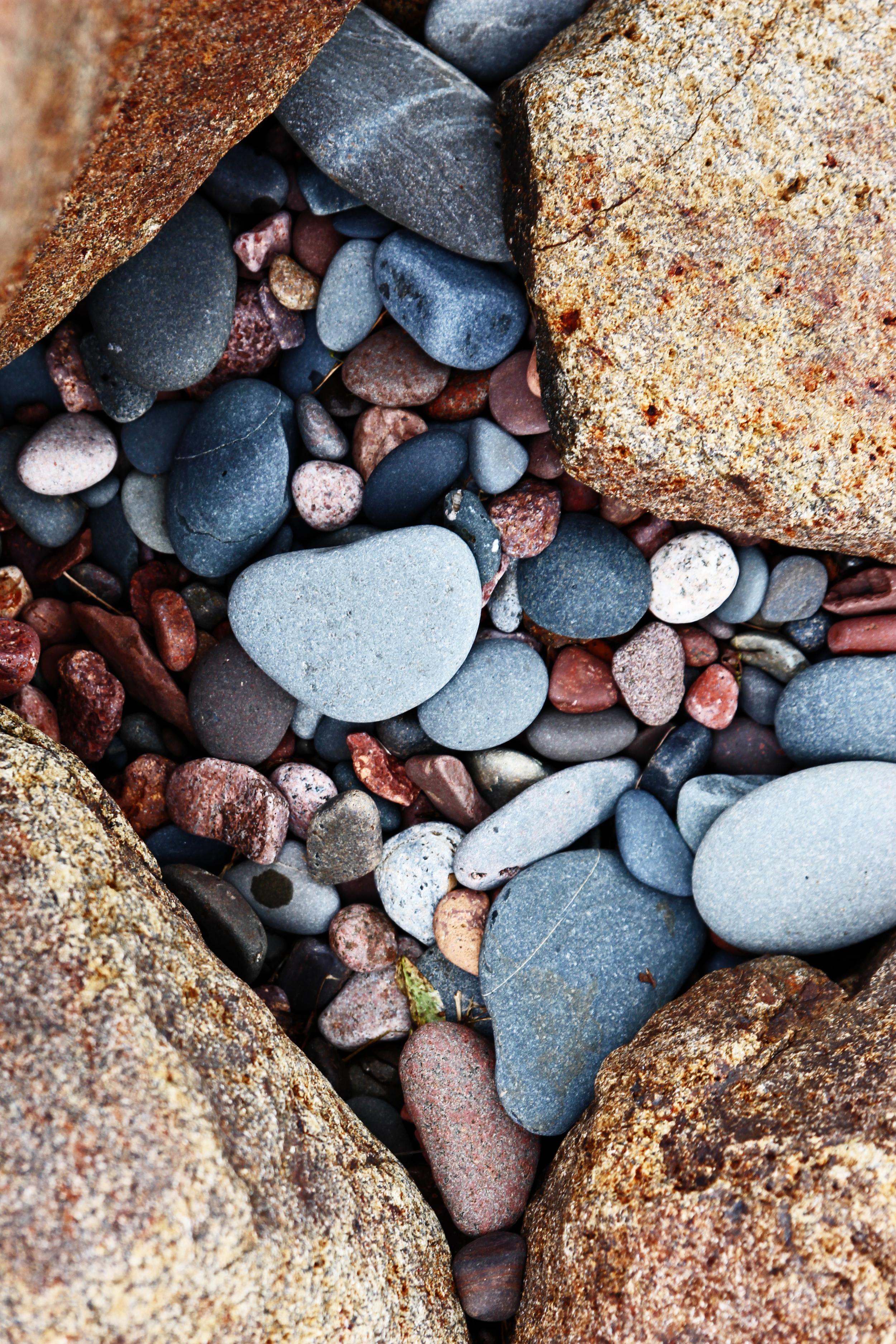 rock nest.jpg