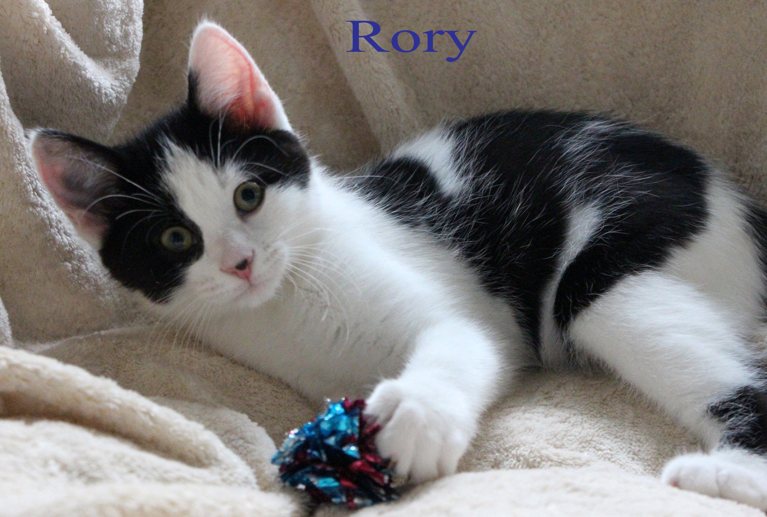 class photo rory_edited-1.jpg