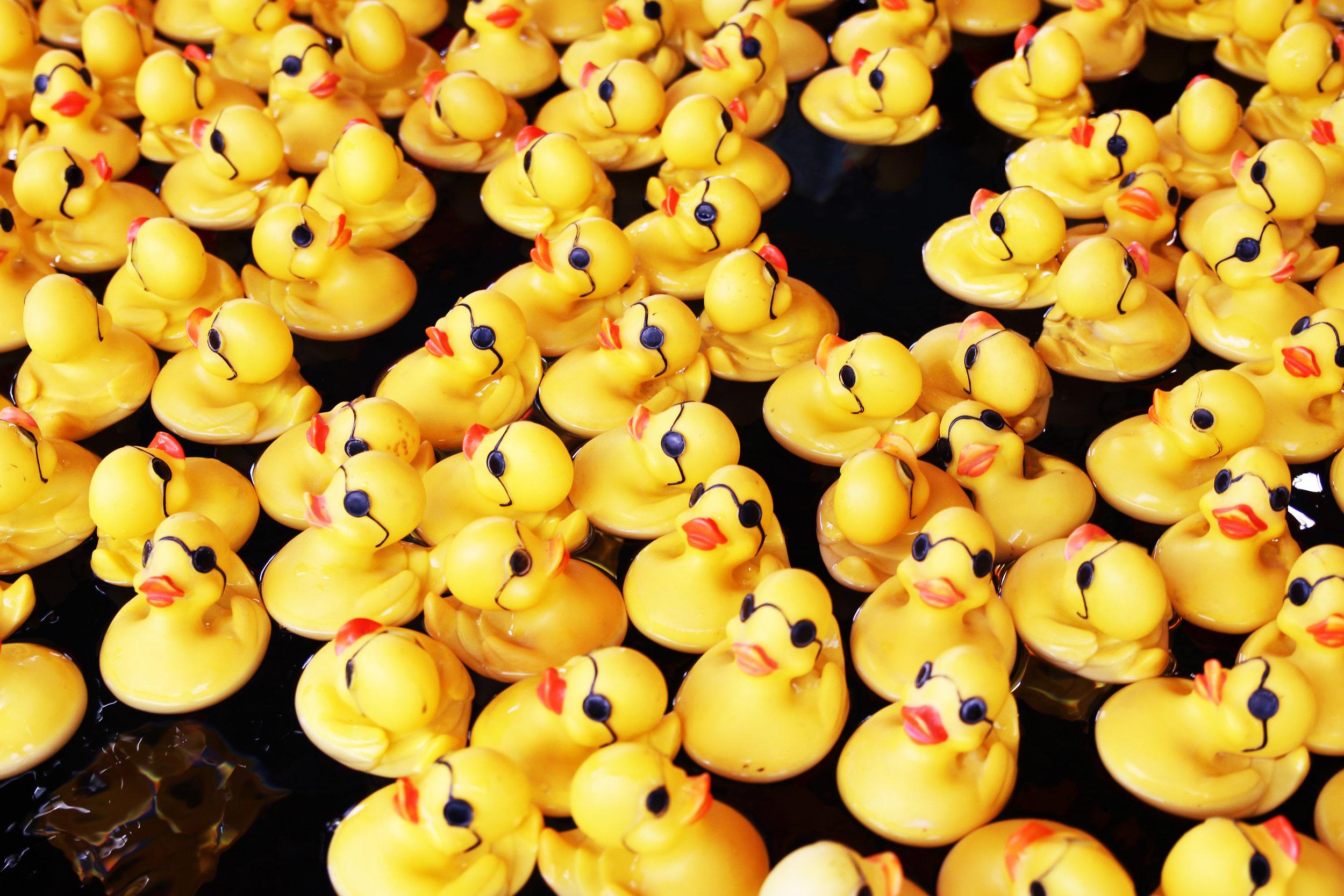 duck tales.jpg