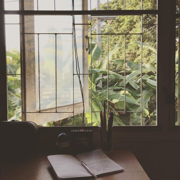 window-chiangmai-thailand-banana-leaves