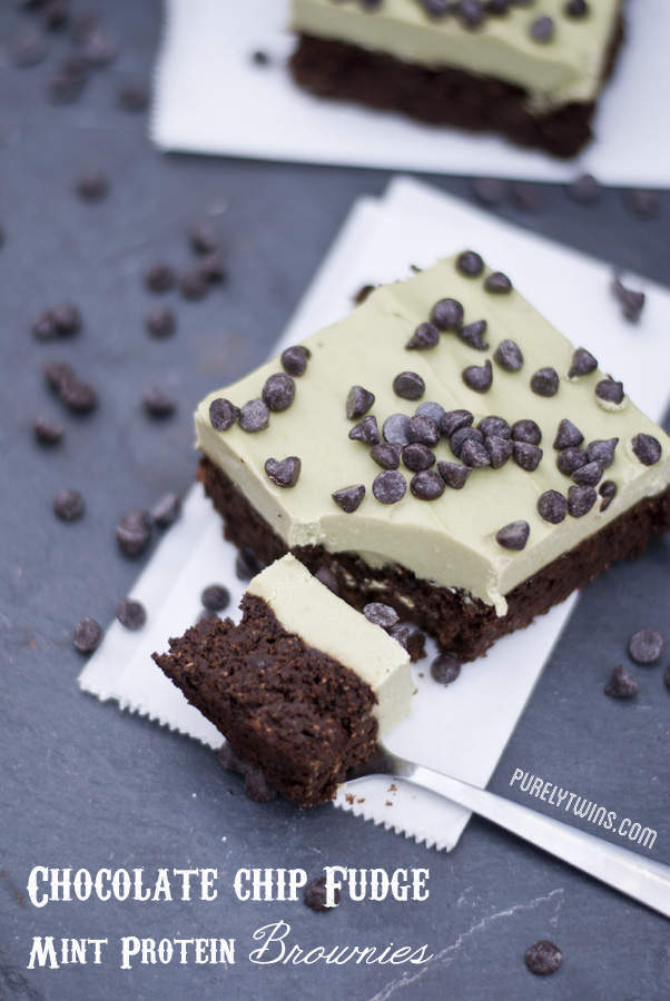 http://purelytwins.com/2013/03/15/mint-chocolate-chip-protein-fudge-brownie-recipe-grain-free-egg-free/