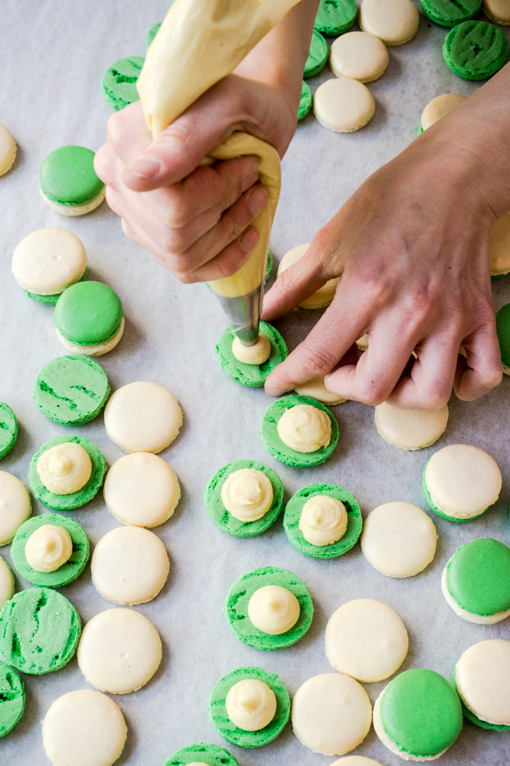 Assembling the macaron - a perfect balance of crunchy and chewy. Seen here, Vanilla Basil.