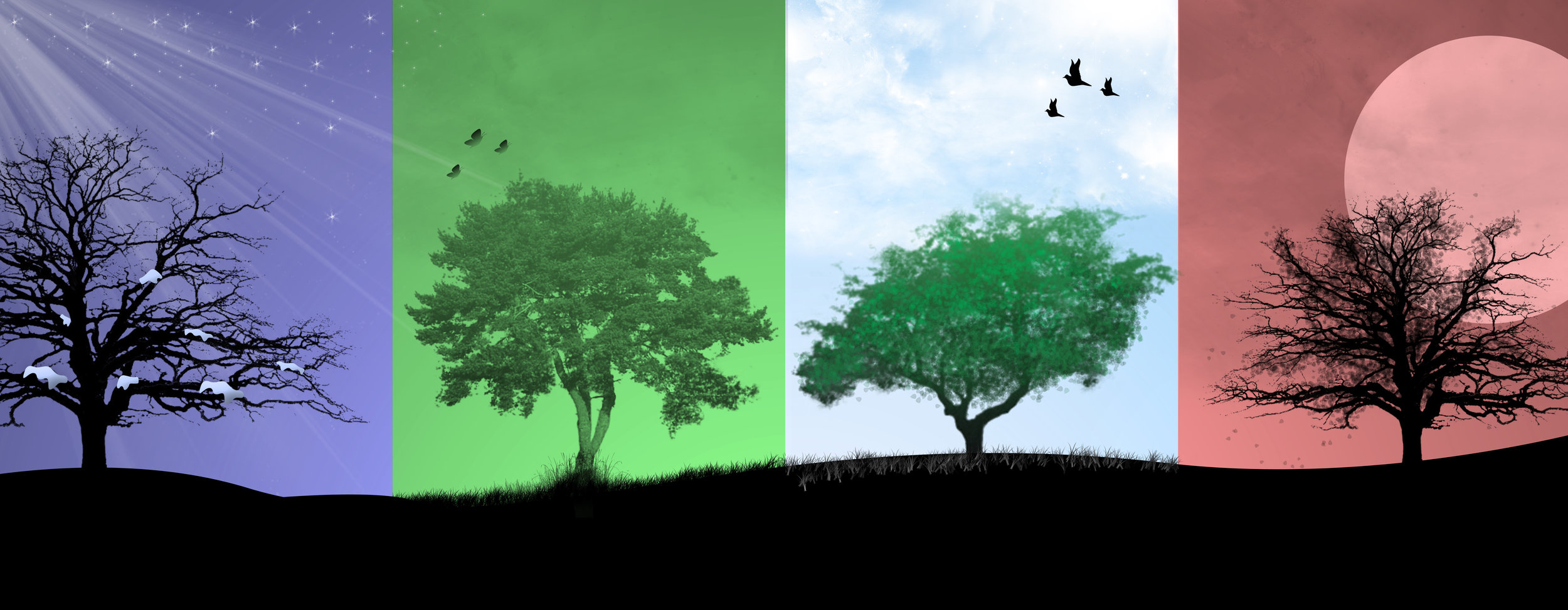 4_seasons.jpg