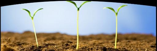 Level 1 Spiritual Development (Fall Semester: 9/15-11/3; 7:00 PM - 9:00 PM)