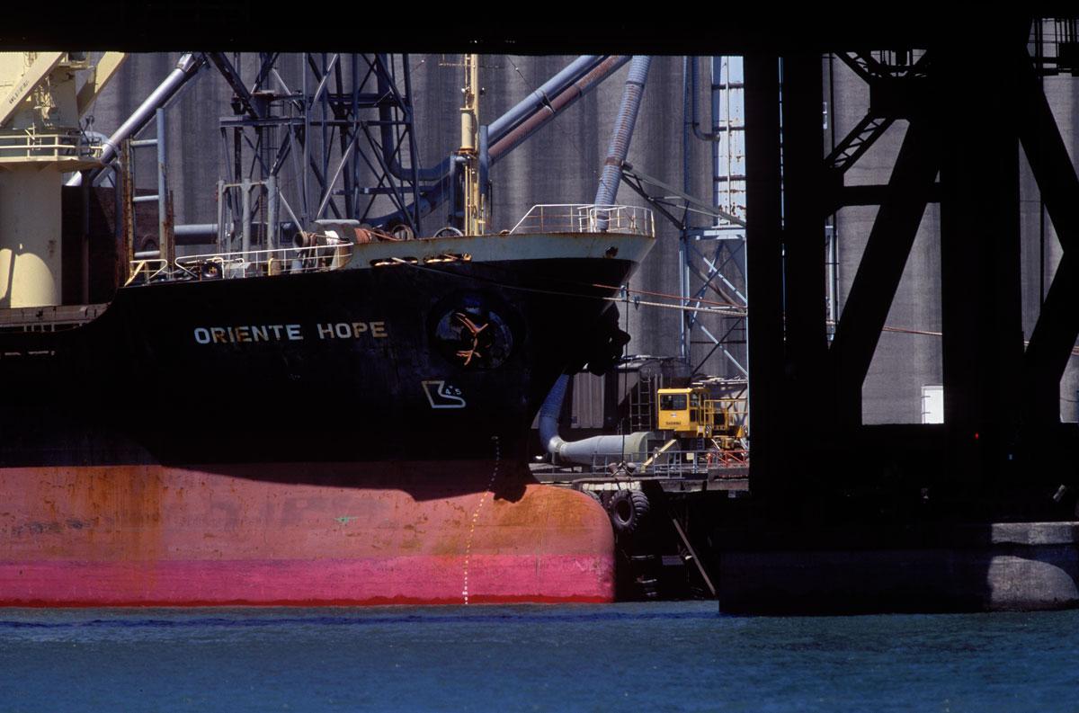ship01-SHARP_cropwebsize.jpg
