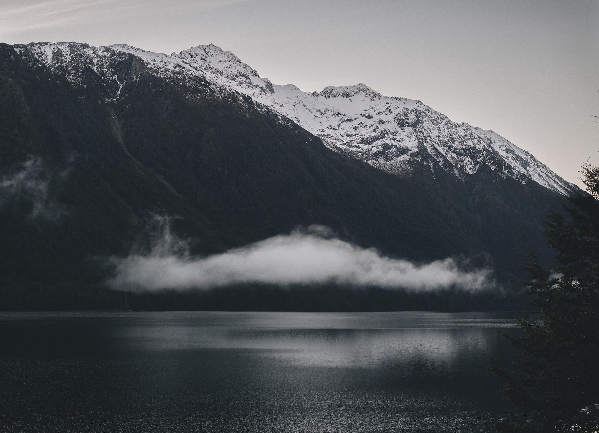 NZ_5180221.jpg