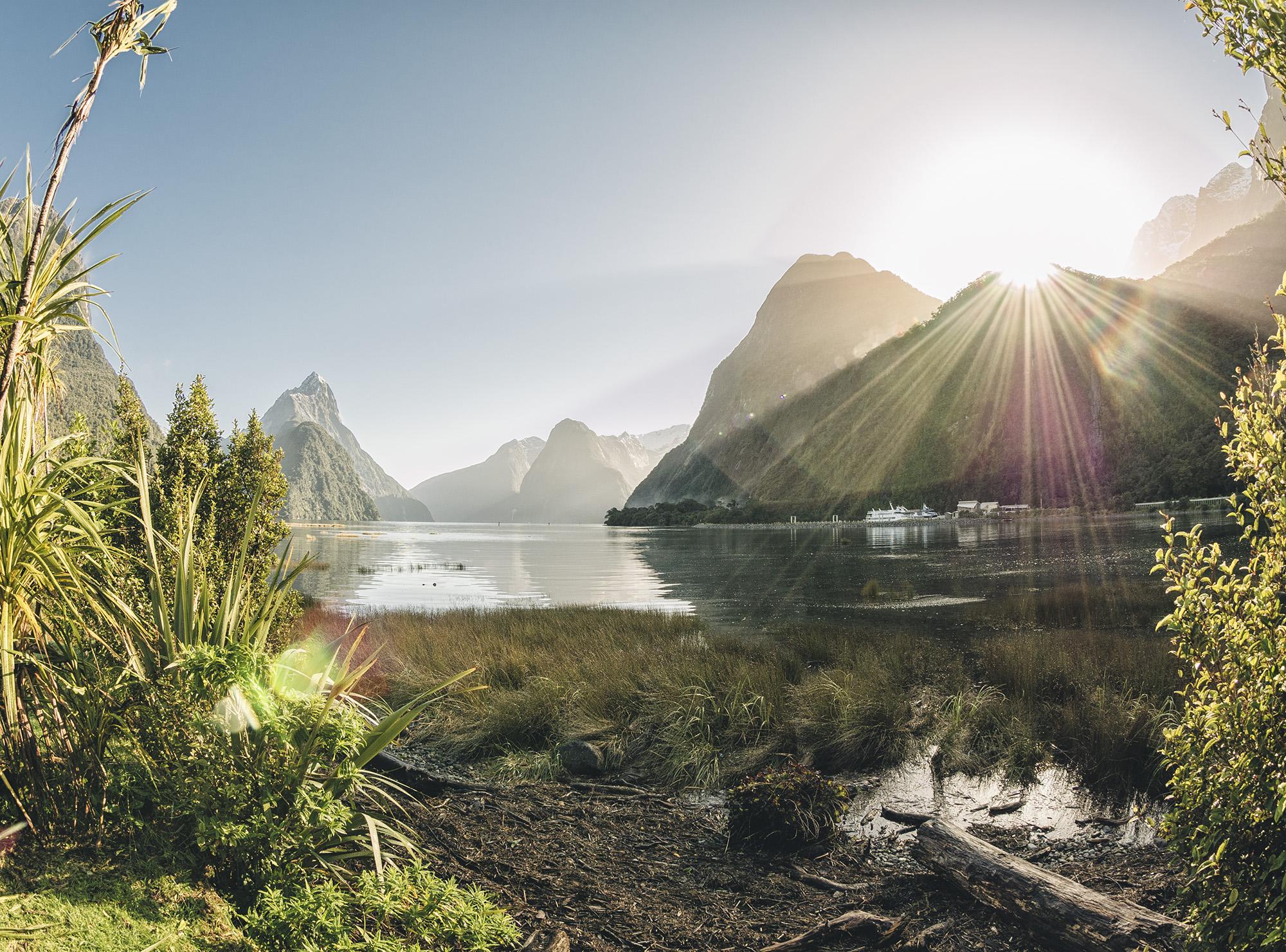 NZ_5190546.jpg