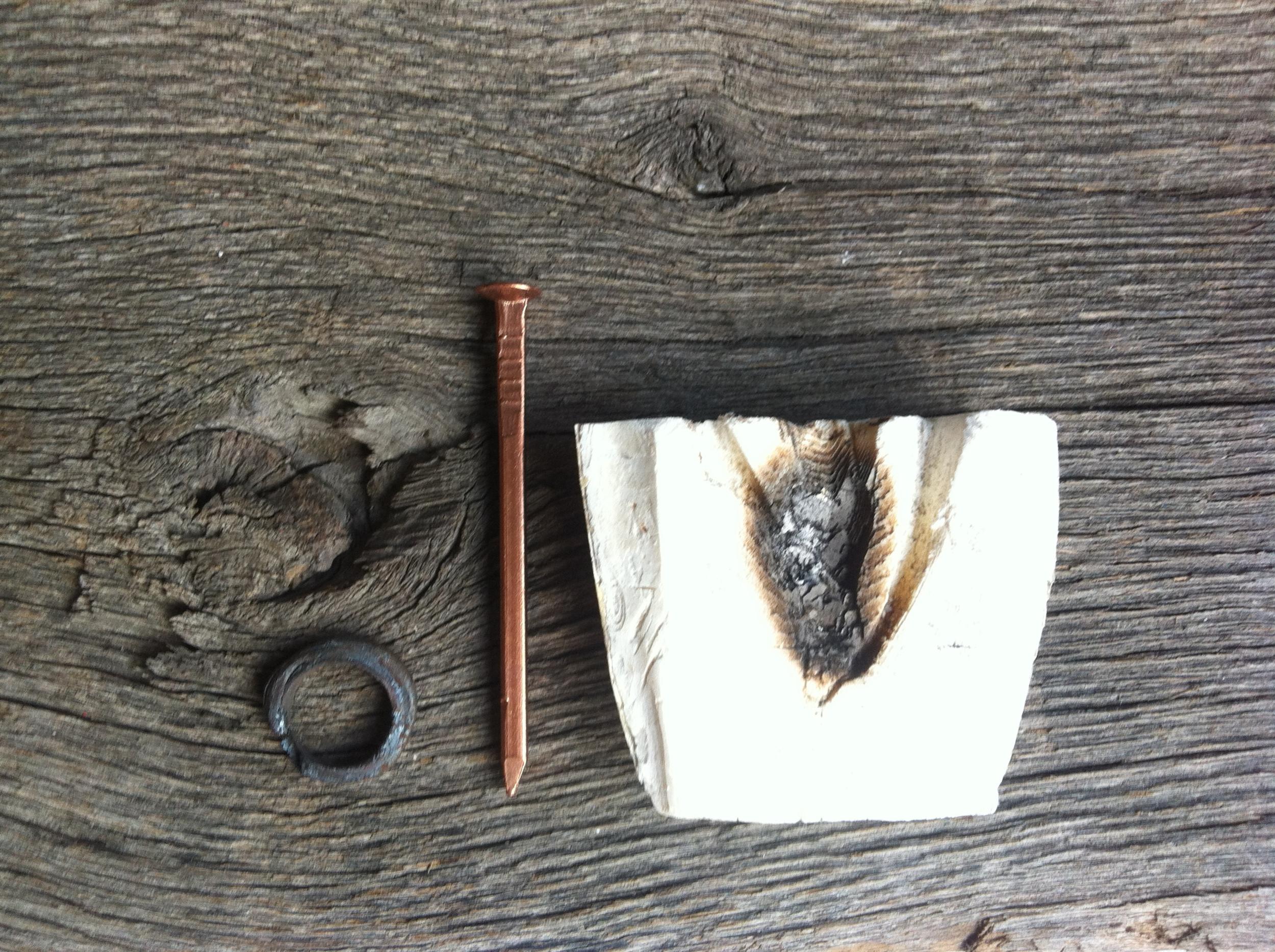 cuttlefish casting.JPG