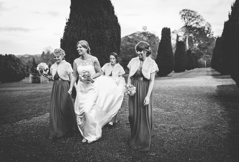 The Heritage Killenard Wedding photographs034.jpg