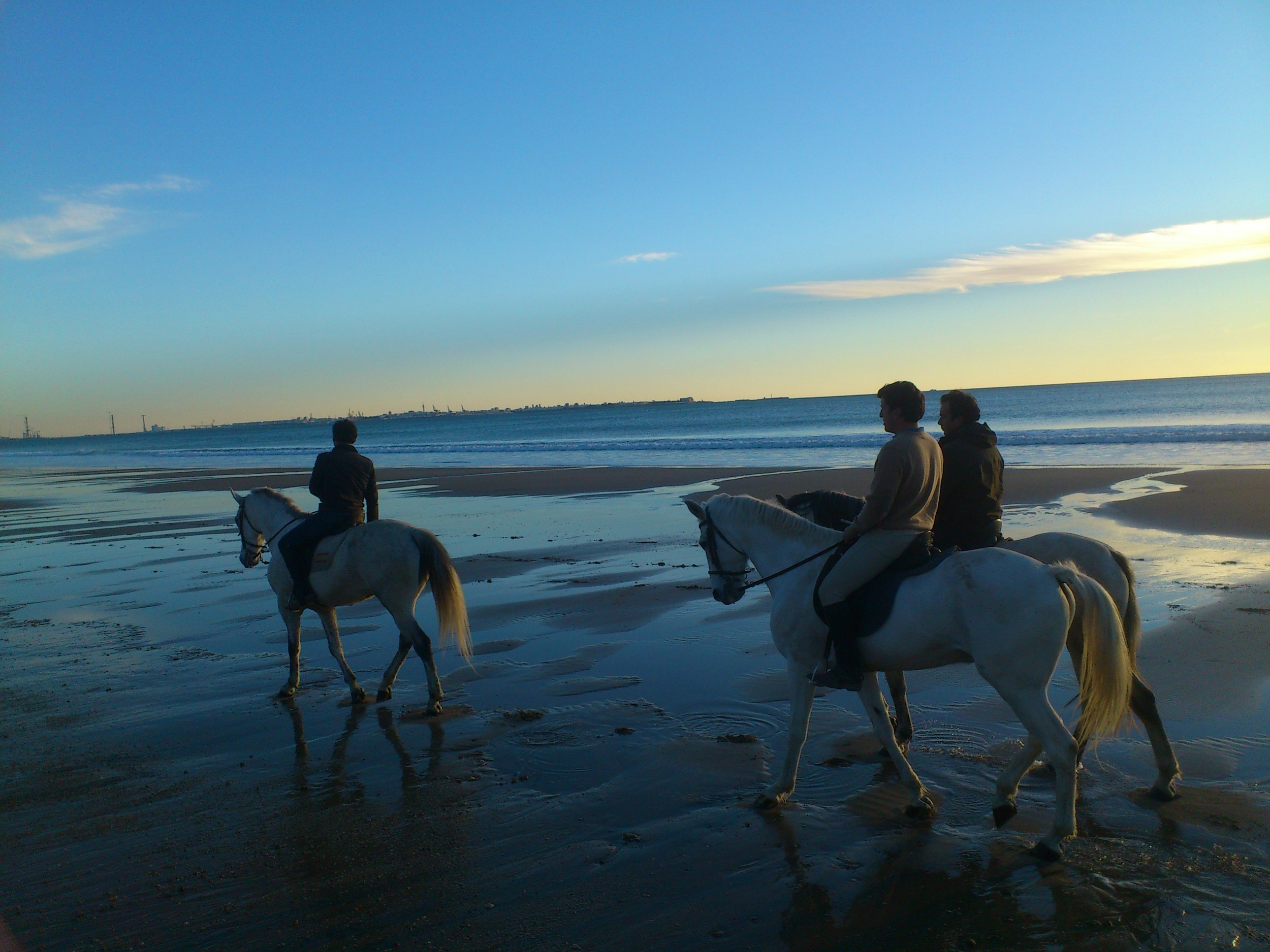 caballos 2.JPG
