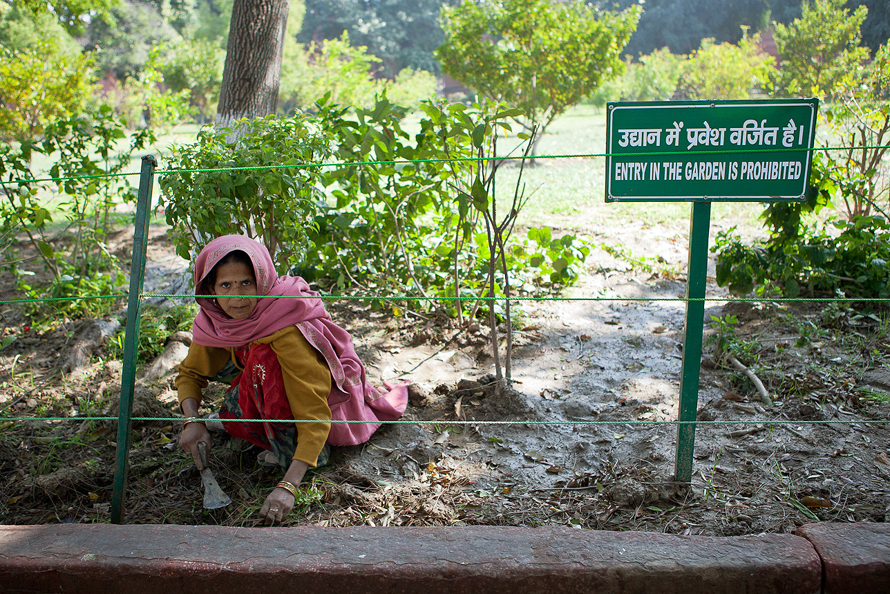 This lady gardens near the Taj Mahal. She was apprehensive initially but I waited for the right moment. One of my favourites.