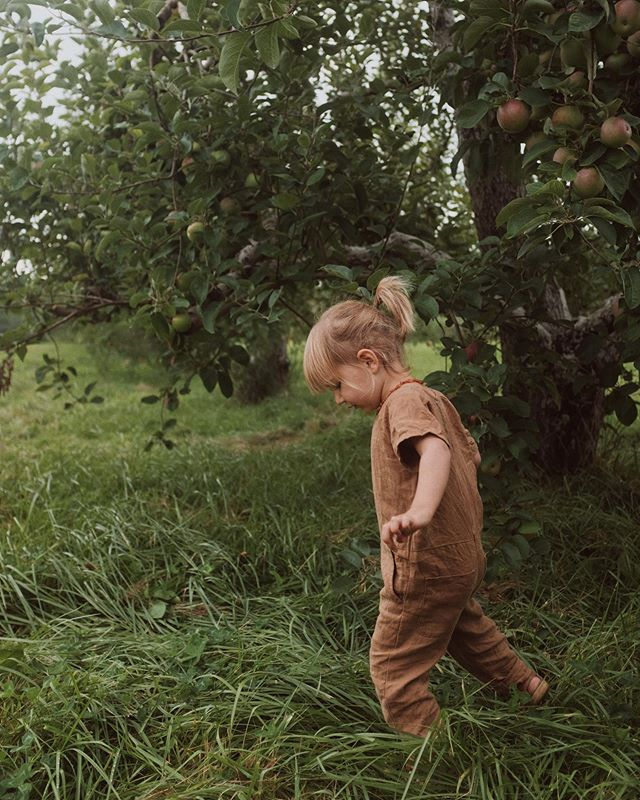 There's still 1 spot left in Kelly's annual Orchard Sessions! This year they're on October 5th @ Shelburne Orchards. Head to www.kellydudash.com/orchard-sessions for more info + to snag it! If the 5th sells out there may be some availability on the 12th as well. Grab your person/people and pick some apples! It's always a fun time. @_kellydudash_