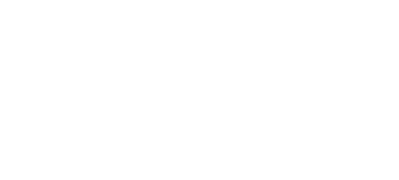 SFFF19_Feature Director.png
