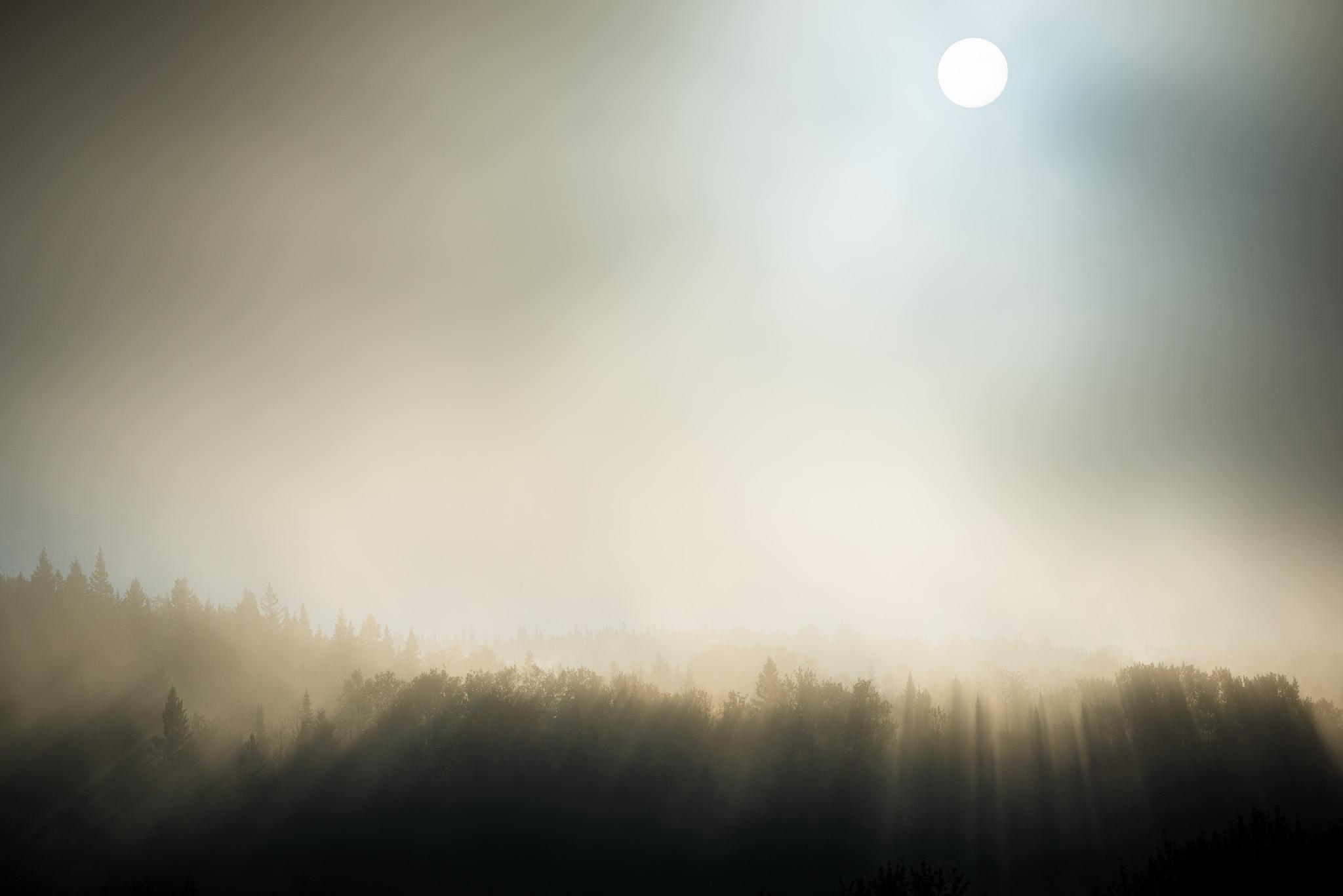 automne-2068.jpg