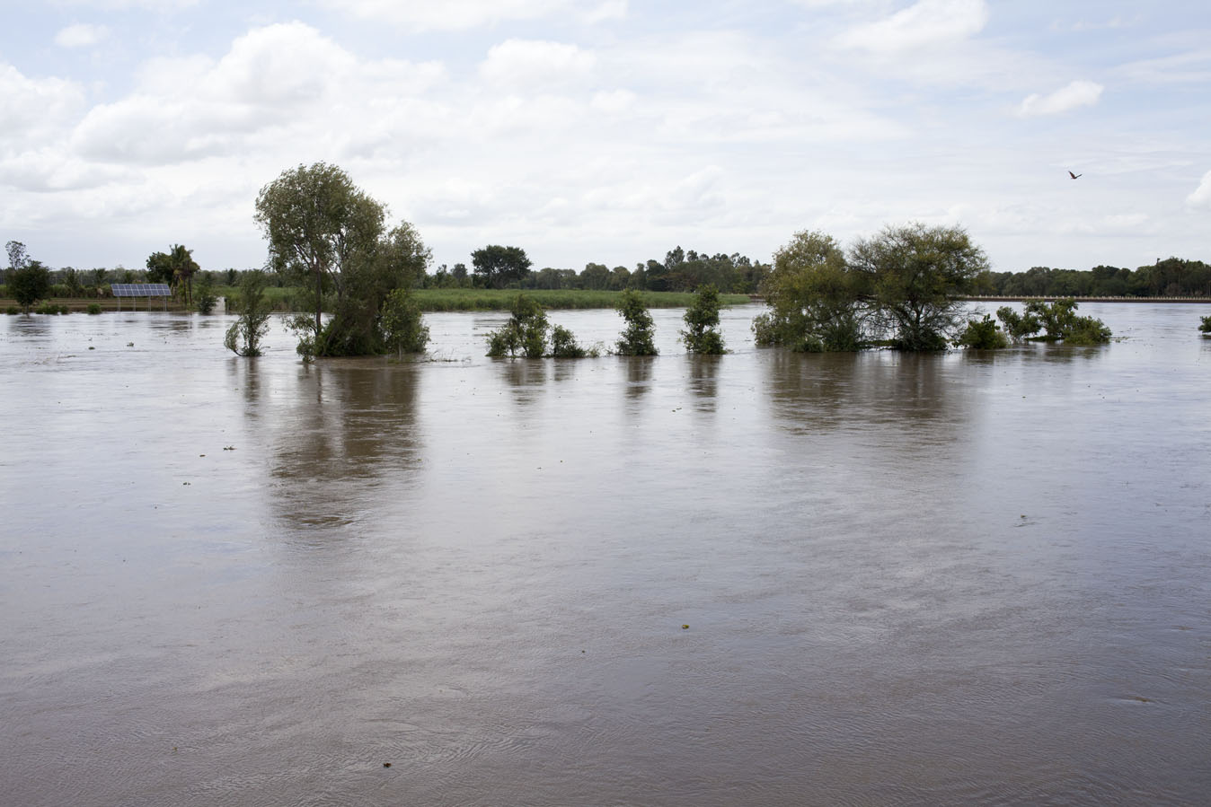 Becca_Ewing_India_flooded river 1.jpg