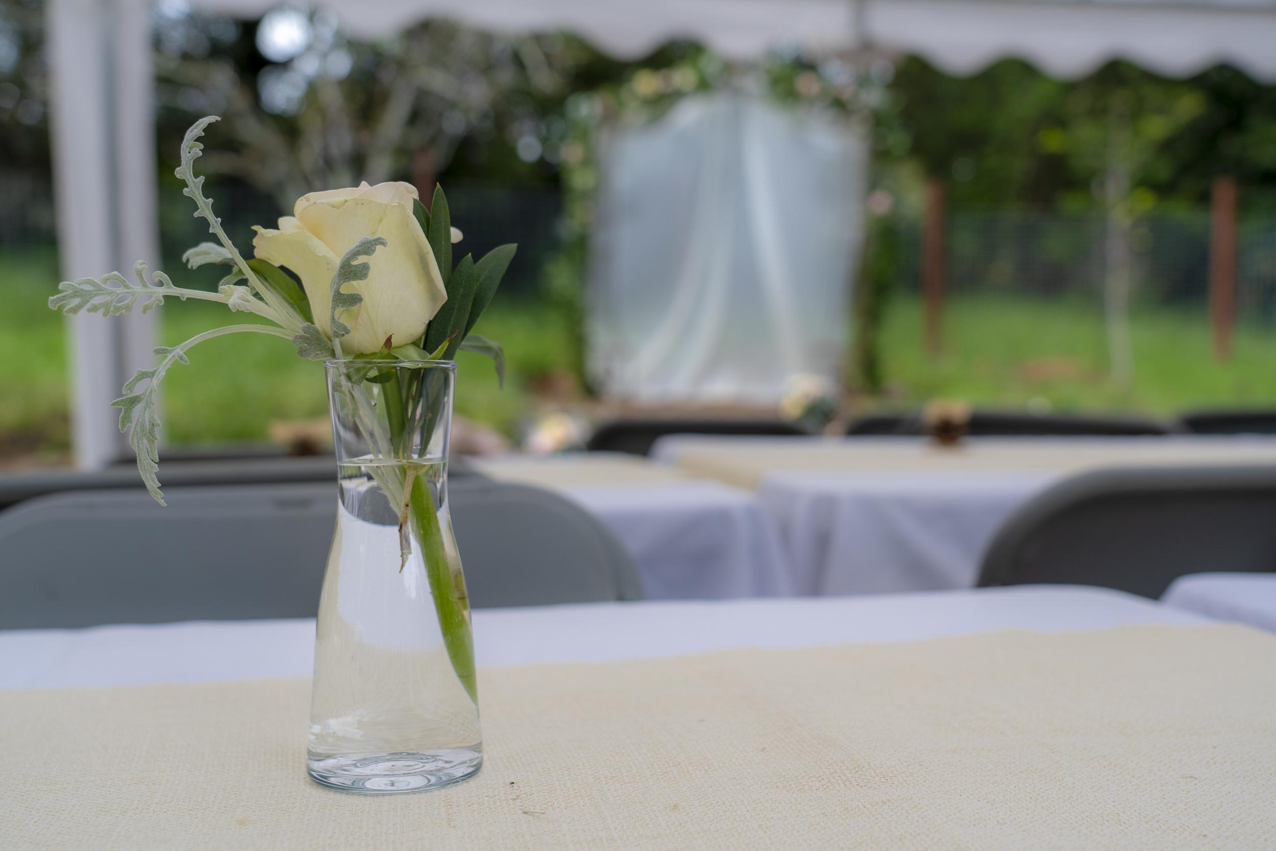 pg_wedding-34.jpg