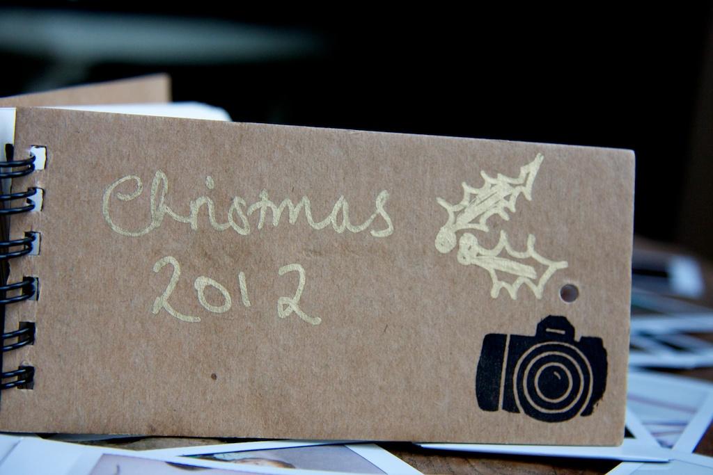 Christmas 2012 5